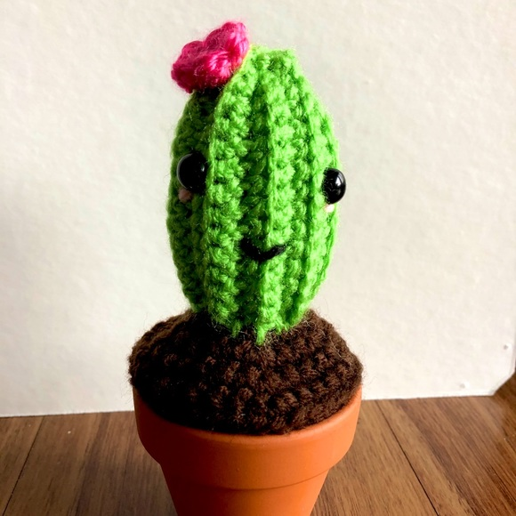 Crochet cactus house plant